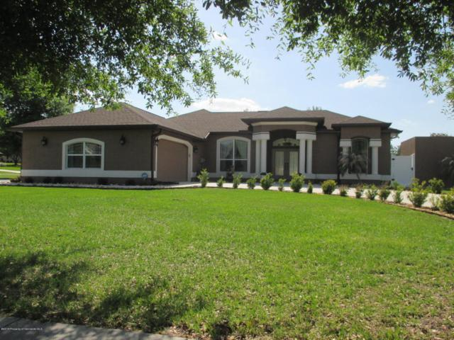 12485 Huntington Woods Avenue, Spring Hill, FL 34609 (MLS #2191812) :: The Hardy Team - RE/MAX Marketing Specialists