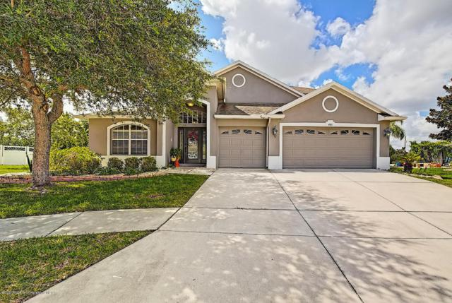 4161 Edenrock Place, Spring Hill, FL 34609 (MLS #2191853) :: The Hardy Team - RE/MAX Marketing Specialists