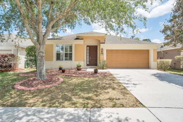 489 Sea Holly Drive, Brooksville, FL 34604 (MLS #2191860) :: The Hardy Team - RE/MAX Marketing Specialists