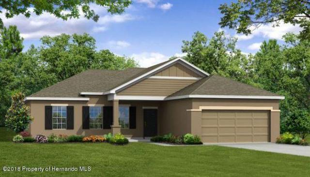 1411 Mariner Boulevard, Spring Hill, FL 34609 (MLS #2191907) :: The Hardy Team - RE/MAX Marketing Specialists