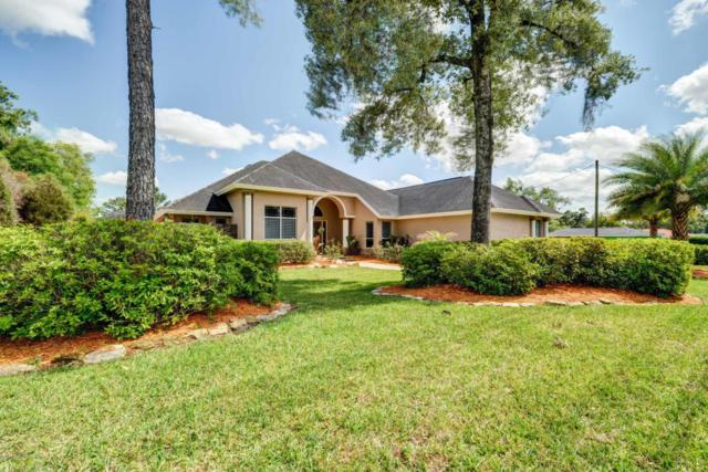 3066 Fairview Drive, Spring Hill, FL 34609 (MLS #2192010) :: The Hardy Team - RE/MAX Marketing Specialists
