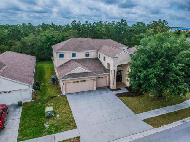 4728 Copper Hill Drive, Spring Hill, FL 34609 (MLS #2192060) :: The Hardy Team - RE/MAX Marketing Specialists