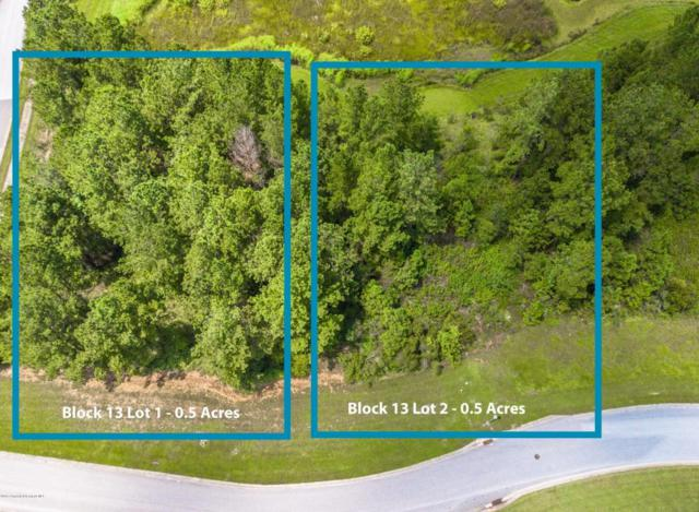 00 Majestic Hills Loop, Brooksville, FL 34601 (MLS #2192147) :: The Hardy Team - RE/MAX Marketing Specialists