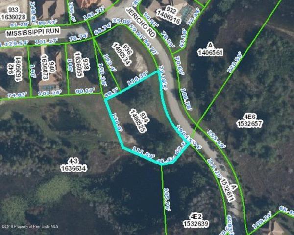0 Jericho Road, Weeki Wachee, FL 34613 (MLS #2192179) :: The Hardy Team - RE/MAX Marketing Specialists