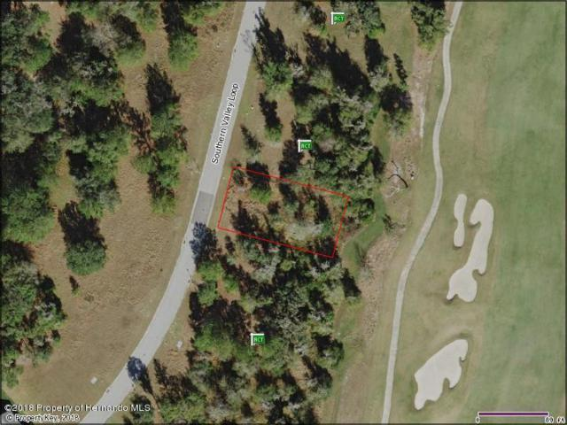 0 Southern Valley Loop, Brooksville, FL 34601 (MLS #2192214) :: The Hardy Team - RE/MAX Marketing Specialists