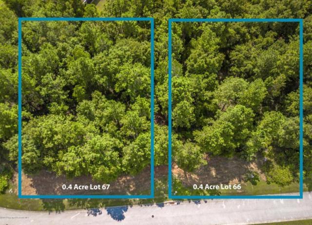 00 Elm Leaf Drive, Brooksville, FL 34601 (MLS #2192226) :: The Hardy Team - RE/MAX Marketing Specialists