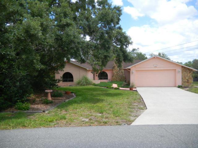 2506 Rim Drive, Spring Hill, FL 34609 (MLS #2192329) :: The Hardy Team - RE/MAX Marketing Specialists