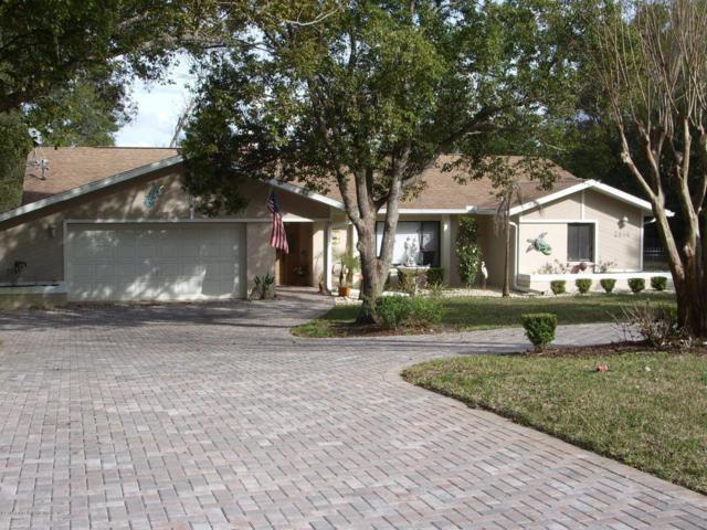 6014 Sandra Drive, Weeki Wachee, FL 34607 (MLS #2192356) :: The Hardy Team - RE/MAX Marketing Specialists