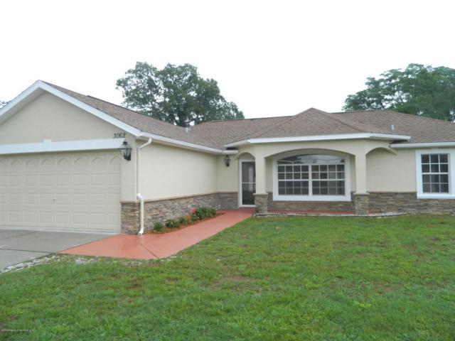 3062 Gloria Avenue, Spring Hill, FL 34609 (MLS #2192445) :: The Hardy Team - RE/MAX Marketing Specialists
