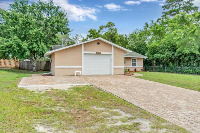 11153 Sheffield Road, Spring Hill, FL 34608 (MLS #2192490) :: The Hardy Team - RE/MAX Marketing Specialists