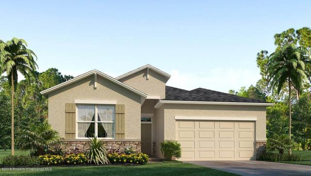 13621 Fairdale Lane, Spring Hill, FL 34609 (MLS #2192622) :: The Hardy Team - RE/MAX Marketing Specialists