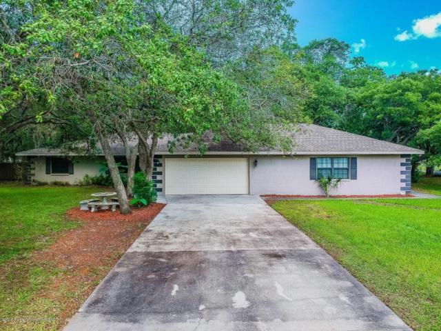 18119 Oak Way Drive, Hudson, FL 34667 (MLS #2192658) :: The Hardy Team - RE/MAX Marketing Specialists
