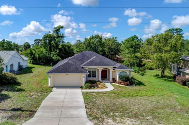 10087 Sunburst Court, Spring Hill, FL 34608 (MLS #2192704) :: The Hardy Team - RE/MAX Marketing Specialists