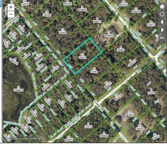 0 Elaine Drive, Webster, FL 33597 (MLS #2192875) :: The Hardy Team - RE/MAX Marketing Specialists