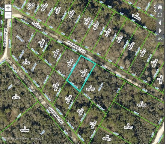 0 Northwest Avenue, Webster, FL 33597 (MLS #2192876) :: The Hardy Team - RE/MAX Marketing Specialists