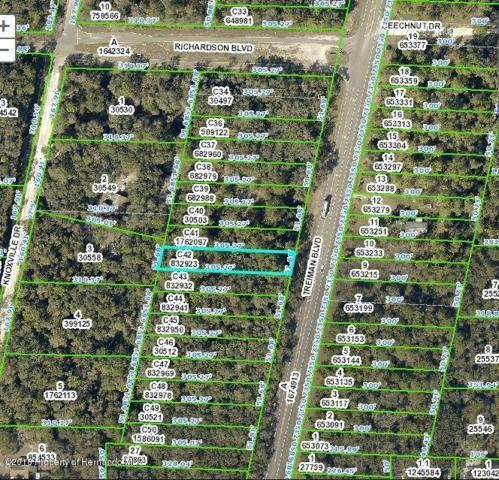 0 Treiman Boulevard, Webster, FL 33597 (MLS #2192882) :: The Hardy Team - RE/MAX Marketing Specialists