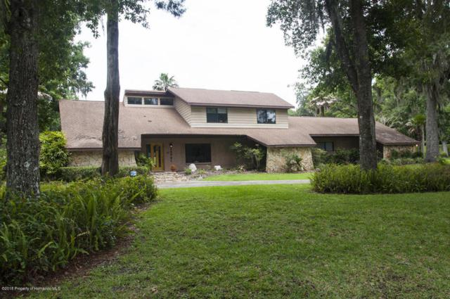 24041 Eppley Drive, Brooksville, FL 34601 (MLS #2192894) :: The Hardy Team - RE/MAX Marketing Specialists