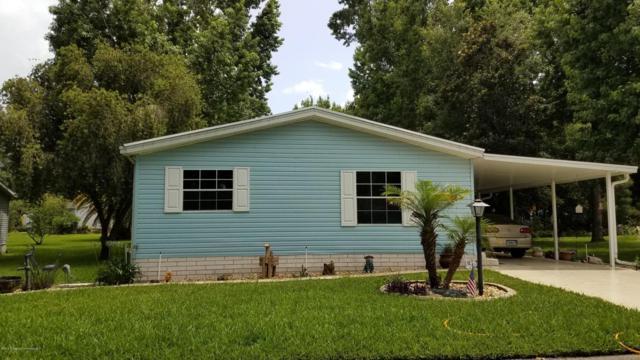 18032 Carrolwood Drive, Brooksville, FL 34604 (MLS #2192955) :: The Hardy Team - RE/MAX Marketing Specialists
