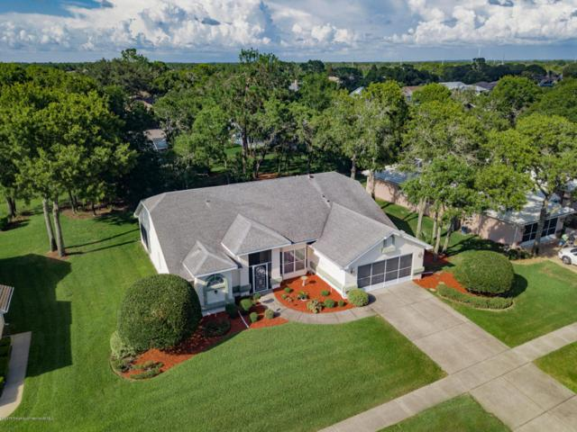 4230 St Ives Boulevard, Spring Hill, FL 34609 (MLS #2193107) :: The Hardy Team - RE/MAX Marketing Specialists