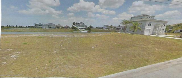 3424 Croaker Drive, Hernando Beach, FL 34607 (MLS #2193156) :: The Hardy Team - RE/MAX Marketing Specialists