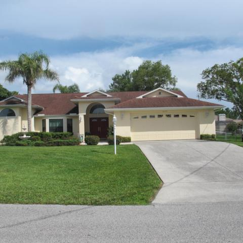4370 Goldcoast Avenue, Spring Hill, FL 34609 (MLS #2193202) :: The Hardy Team - RE/MAX Marketing Specialists