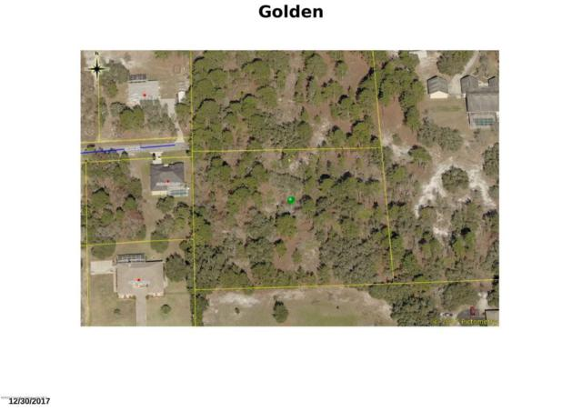 0 Golden, Weeki Wachee, FL 34613 (MLS #2193209) :: The Hardy Team - RE/MAX Marketing Specialists