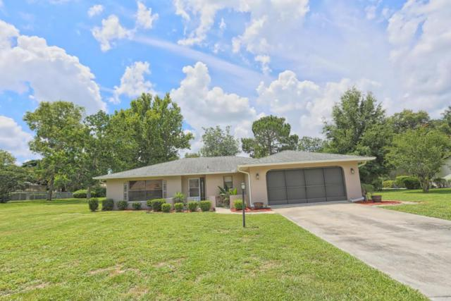 12264 Glen Haven, Spring Hill, FL 34609 (MLS #2193243) :: The Hardy Team - RE/MAX Marketing Specialists