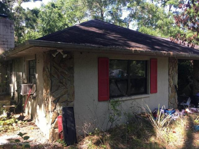 24199 Kiwi Lane, Brooksville, FL 34601 (MLS #2193286) :: The Hardy Team - RE/MAX Marketing Specialists