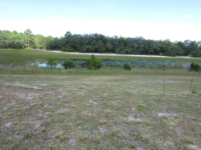 Lot 3 Nightwalker Road, Weeki Wachee, FL 34613 (MLS #2193308) :: The Hardy Team - RE/MAX Marketing Specialists
