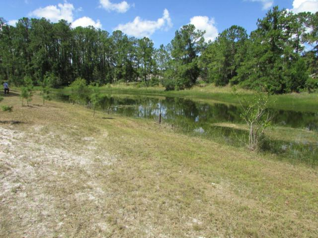 Lot 1 Frigate Bird Avenue, Weeki Wachee, FL 34613 (MLS #2193309) :: The Hardy Team - RE/MAX Marketing Specialists