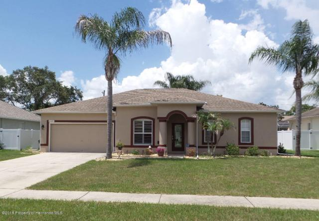 15431 Cambria Drive, Brooksville, FL 34604 (MLS #2193327) :: The Hardy Team - RE/MAX Marketing Specialists