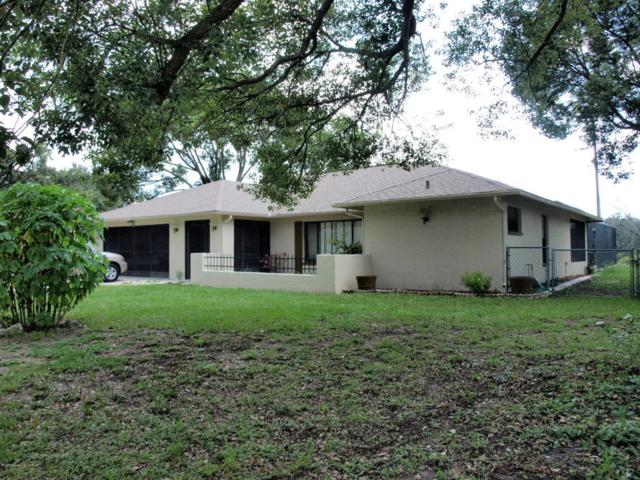 8406 Annapolis Road, Spring Hill, FL 34608 (MLS #2193342) :: The Hardy Team - RE/MAX Marketing Specialists