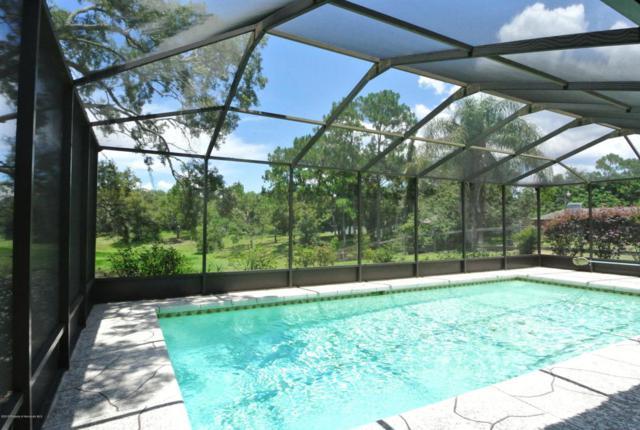 2096 Danforth Road, Spring Hill, FL 34608 (MLS #2193428) :: The Hardy Team - RE/MAX Marketing Specialists