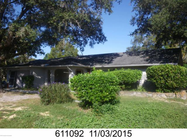 11053 Mayflower Road, Spring Hill, FL 34608 (MLS #2193438) :: The Hardy Team - RE/MAX Marketing Specialists