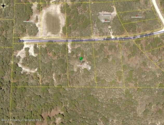 11152 Pigeon Avenue, Weeki Wachee, FL 34614 (MLS #2193458) :: The Hardy Team - RE/MAX Marketing Specialists