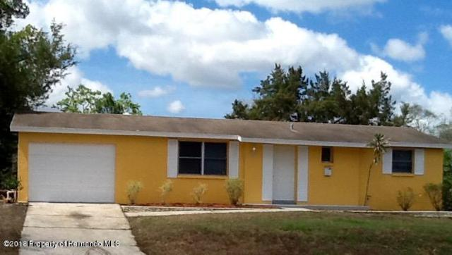 10044 Hayes Street, Spring Hill, FL 34608 (MLS #2193481) :: The Hardy Team - RE/MAX Marketing Specialists