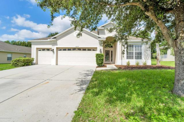 4279 Blakemore Place, Spring Hill, FL 34609 (MLS #2193496) :: The Hardy Team - RE/MAX Marketing Specialists