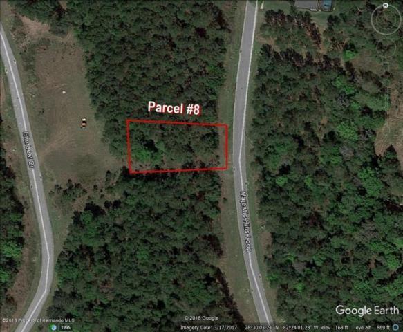 0 Majestic Hills Loop, Brooksville, FL 34601 (MLS #2193546) :: The Hardy Team - RE/MAX Marketing Specialists