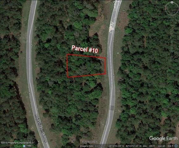 0 Majestic Hills Loop, Brooksville, FL 34601 (MLS #2193549) :: The Hardy Team - RE/MAX Marketing Specialists