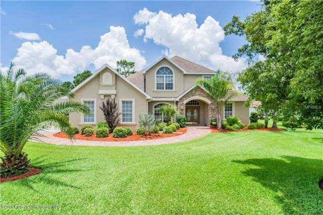 5429 Leather Saddle Lane, Spring Hill, FL 34609 (MLS #2193581) :: The Hardy Team - RE/MAX Marketing Specialists