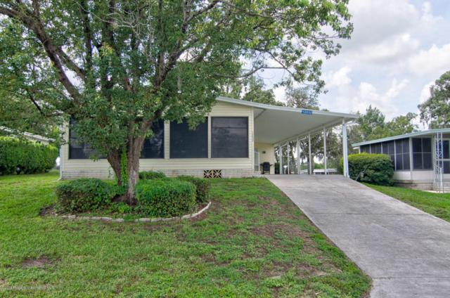 12032 Diplomacy Avenue, Brooksville, FL 34613 (MLS #2193741) :: The Hardy Team - RE/MAX Marketing Specialists