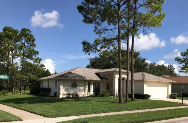 10044 Eagle Bend Drive, Hudson, FL 34667 (MLS #2193982) :: The Hardy Team - RE/MAX Marketing Specialists