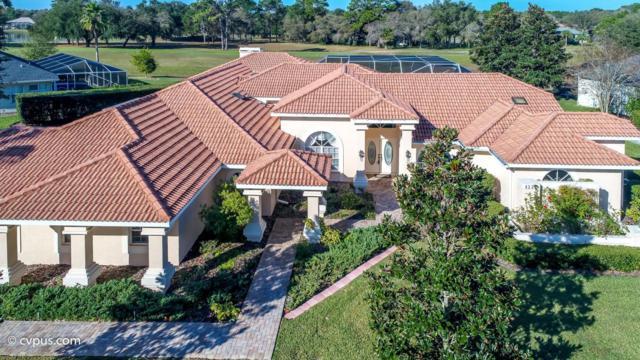 4359 Mallard Lake Drive, Brooksville, FL 34609 (MLS #2193992) :: The Hardy Team - RE/MAX Marketing Specialists