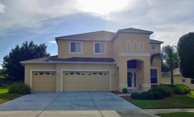 4229 Blakemore Place, Spring Hill, FL 34609 (MLS #2194199) :: The Hardy Team - RE/MAX Marketing Specialists