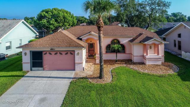 10433 Sandtrap Drive, Spring Hill, FL 34608 (MLS #2194301) :: The Hardy Team - RE/MAX Marketing Specialists