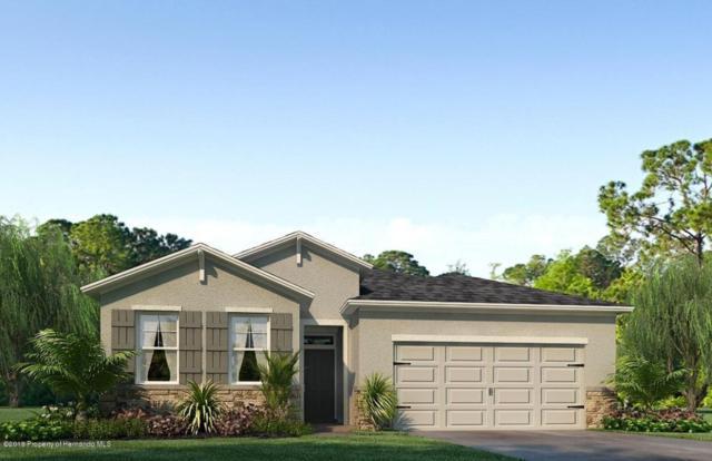 17765 Garsalaso Circle, Brooksville, FL 34604 (MLS #2194309) :: The Hardy Team - RE/MAX Marketing Specialists