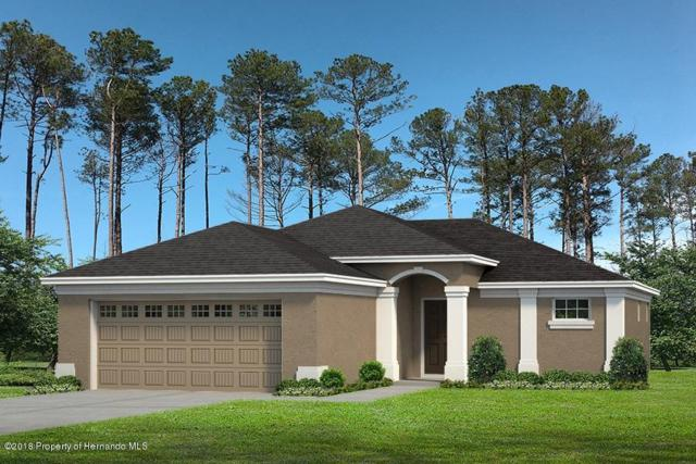12325 Lark Sparrow Road, Brooksville, FL 34614 (MLS #2194390) :: The Hardy Team - RE/MAX Marketing Specialists