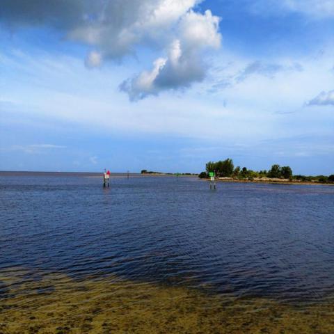 0 Flamingo Boulevard, Hernando Beach, FL 34607 (MLS #2194417) :: The Hardy Team - RE/MAX Marketing Specialists
