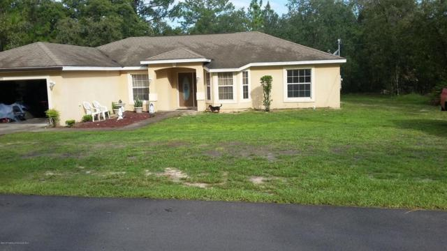 12355 Jaybird Road, Weeki Wachee, FL 34614 (MLS #2194461) :: The Hardy Team - RE/MAX Marketing Specialists