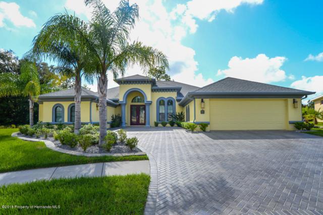 4027 Gevalia Drive, Brooksville, FL 34604 (MLS #2194490) :: The Hardy Team - RE/MAX Marketing Specialists